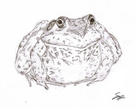 Frog 1 by Steven Powers SMP
