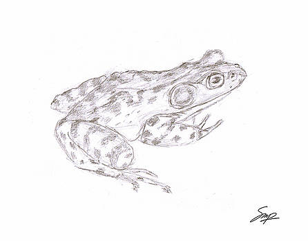 Frog 3 by Steven Powers SMP