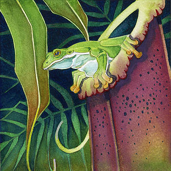Frog in Tropical Pitcher by Lyse Anthony