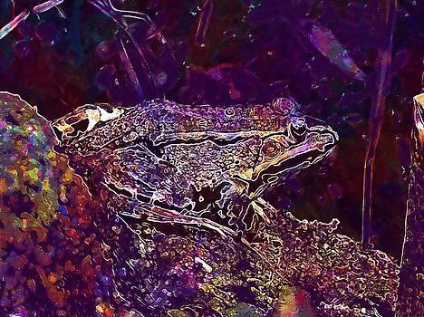 Frog Water Frog Animal Frog Pond  by PixBreak Art