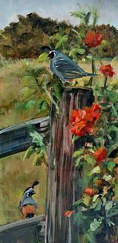 Frolic in Wild Roses by Susan E Jones