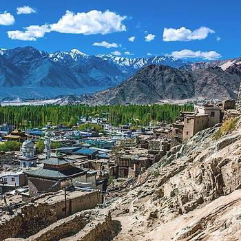 From The Kings Palace In Leh, India by Aleck Cartwright