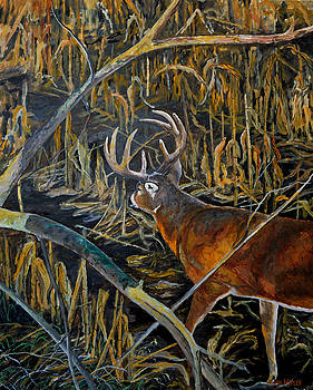 From the Stand .. Whitetail Deer by Alvin Hepler
