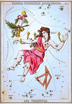 From Uranias Mirror, Gloria Frederici, Andromeda, and Triangula, 1825 by Vintage Printery