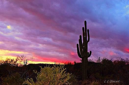 Front Yard Sunset by L L Stewart