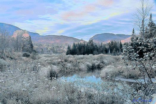 Frost on the Bogs by John Selmer Sr