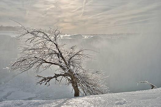 Frostbite by Sebastien Coursol
