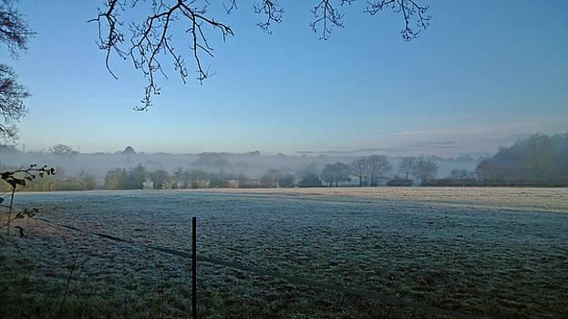 Frosted Fields Misty Trees by Anne Kotan