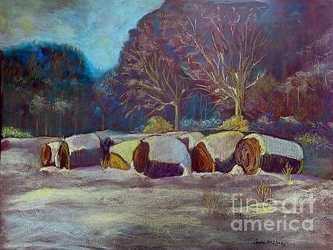 Frosted Hay Bales by Sandra McClure