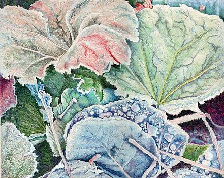 Frosted Leaves by Robynne Hardison