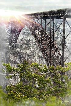 Frosty Gorge Bridge by Lj Lambert