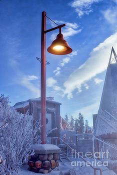 Frosty Lamp Post by Darcy Michaelchuk