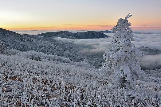 Frosty Morn by Greg Dollyhite
