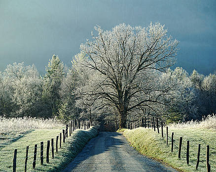 Frosty Morning on Sparks Lane by TnBackroadsPhotos