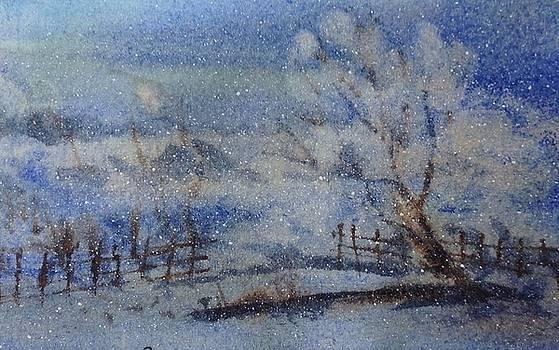 Frosty Morning on the Farm by Sarah Guy-Levar