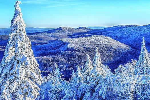 Frosty on Top Black Mountain by Thomas R Fletcher