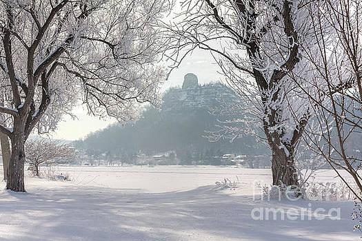 Frosty Sugarloaf Between Trees by Kari Yearous