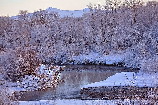 Frosty Winter Evening Two by D Nigon