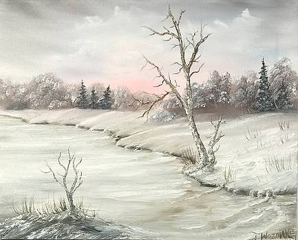 Frosty winter morning  by Justin Wozniak