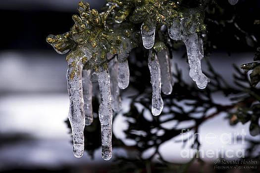 Frozen 4 by Ronald Hoehn