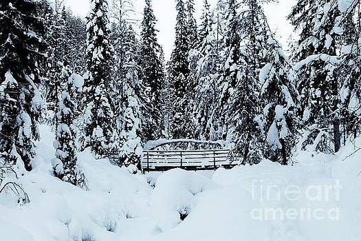 Frozen bridge by Ram Photography