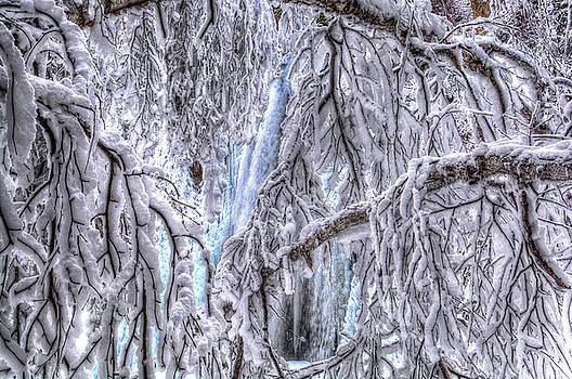 Frozen Falls by Fiskr Larsen