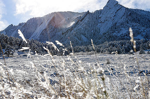 Frozen Flatirons by Maalikah Hartley