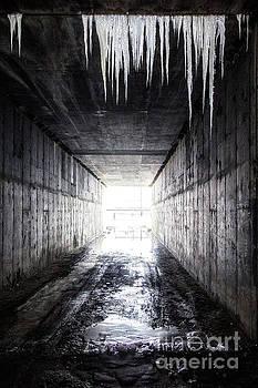 Frozen Gateway by Spencer Baugh