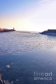 Frozen Harbour by Jan Brons