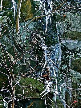Frozen in Time by E Robert Dee