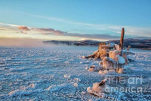 Frozen Morning by Danny Nestor
