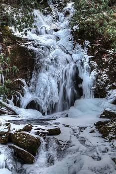 Frozen Mouse Creek Falls In The Great Smoky Mountains National Park by Carol Montoya