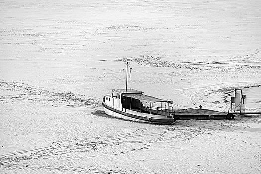 Frozen by Plamen Petkov