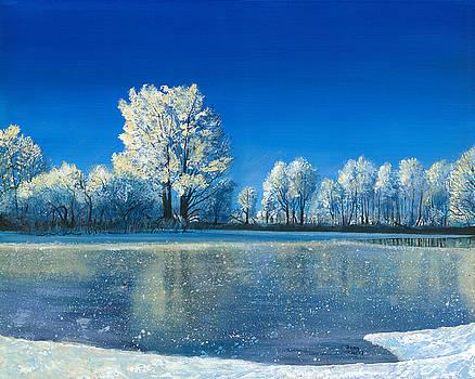 Frozen Pond by Sean Koziel