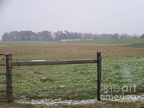 Frozen Rainy Field by Kevin Croitz