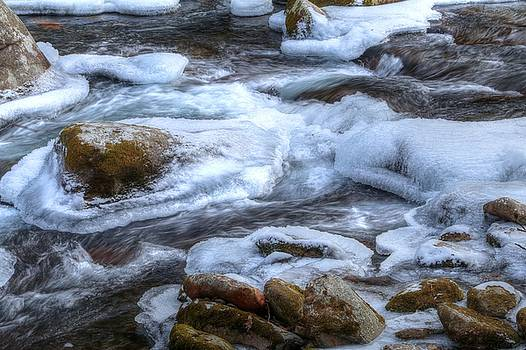 Frozen Waters Of Big Creek by Carol Montoya