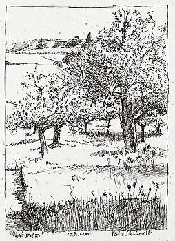 Martin Stankewitz - fruit tree orchard plein air ink drawing