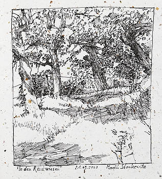 Martin Stankewitz - fruit trees,landscape ink drawing in romantic style