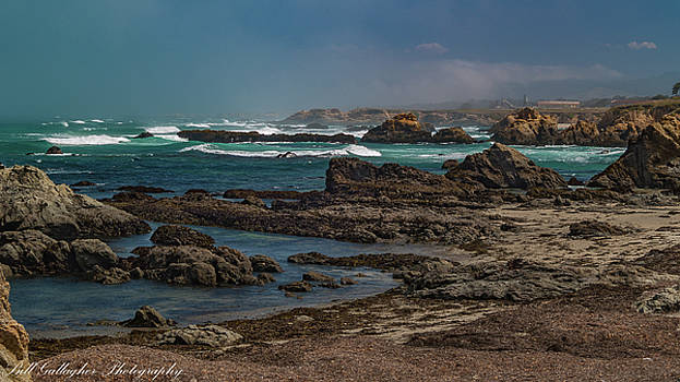 Ft Bragg Coast by Bill Gallagher