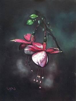 Fuchsia and Dew  by Courtney Wilding