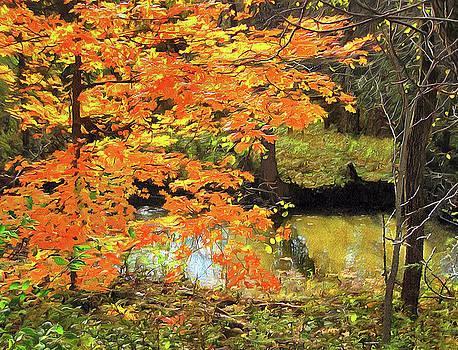 Full Autumn Bloom by Cedric Hampton