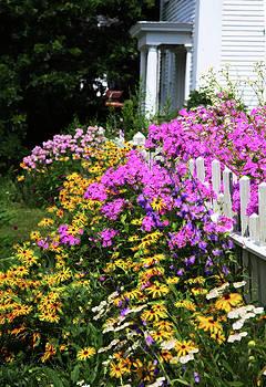 Full Bloom by Carol Kinkead