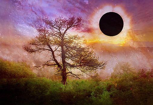 Debra and Dave Vanderlaan - Full Eclipse over Misty Mountain