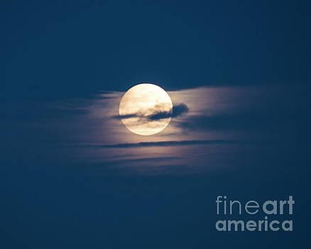 Full Moon February by Steven Natanson