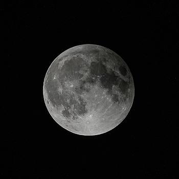 Full Moon by Gary Lengyel
