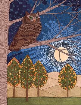 Full Moon Illumination by Pamela Schiermeyer