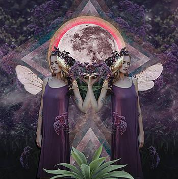 Full Moon in Gemini by Lori Menna