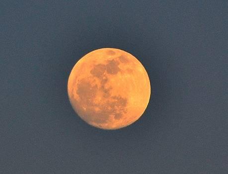 Full Moon by Katerina Naumenko