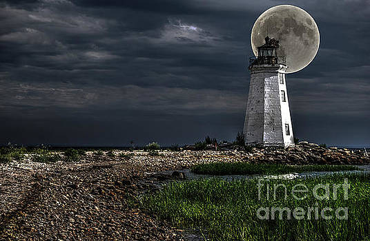 Full Moon Light by Guy Harnett