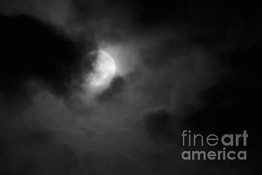 Full Moon  by Mellissa Ray